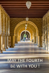 May the Fourth Be With You (Jill Clardy) Tags: california northamerica paloalto stanforduniversity usa colonnade quad forth may