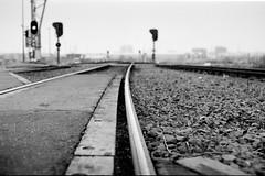 Harbour tracks (Antwerpen) (gabriele.bozzi) Tags: 50mmf17 antwerpen kodakt400cn pentaxmesuper spoorweg bw analog 2000 industrialarcheology cranes harbour