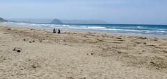 Surfer Talk (lorinleecary) Tags: california beach morrorock women sky sand surfers hills cayucos ocean
