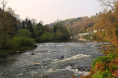 Riding the rapids (myraemery) Tags: symonds yat rapids water river wye valley trees whitewater canoes canoing fastwater canoneos70d 1755mm herefordshire uk