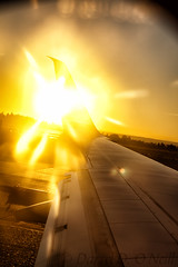 Alar Stylings 3 (LongInt57) Tags: sun sunset wing aircraft airplane jet runway tarmac airport seatac seattle washington usa yellow golden white flare