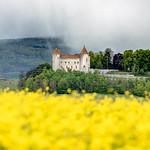 Château de Champvent en printemps
