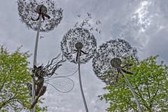 Fairy & Dandelions (Croydon Clicker) Tags: fairy dandelion art sculpture steel garden tree cloud sky wisley rhc surrey