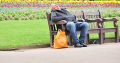 Flower Bed (jaykay72.) Tags: london uk street candid streetphotography embankmentgardens stphotographia