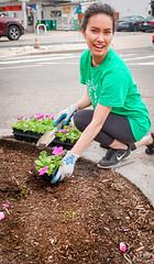 2019.05.04 Vermont Avenue Garden Blooms and Work Party, Washington, DC USA 01844