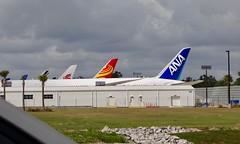 Boeing 787 Charleston SC Line-up (Deepereyes) Tags: 787 b787 boeing chs charleston sc alnipponairline chinasouthernairline hainanairlines airfrance