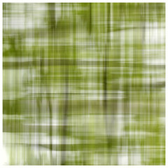 Spring plaid. (jeanne.marie.) Tags: spring springtime may plaid seasonalplaid green white blur abstract nature 100xthe2019edition 100x2019 image51100