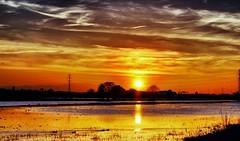 Conmovedor atardecer (portalealba) Tags: zaragoza zaragozaparque aragon españa spain sunset sol atardecer ocaso portalealba canon eos1300d nwn