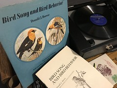 Bird Song record (artnoose) Tags: sunday record night vinyl 70s player bird field sounds recording vintage ornithology