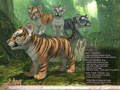 JIAN Tiger Cub Collection (Belle. May '19) ([JIAN]) Tags: secondlife mesh animals wild lion tiger cub cute pets pet jian companion wanderer