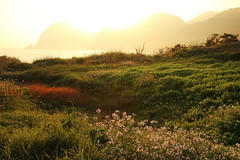 Morning (Teruhide Tomori) Tags: landscape japan kyoto tango 日本 morning 日の出 sunrise 京都 丹後半島 kyotango 京丹後 丹後
