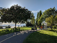 Elliot Bay Trail: Relax, work, and enjoy the ride. (Seattle Department of Transportation) Tags: donghochang seattle sdot transportation elliot bay trail green dog bikes riders trailer trees spring