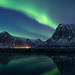 Northern Lights - Lofoten - Norway