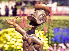disneyland-230 (magnus.berg) Tags: disneyland california donald duck statue lensbaby trio sculpture