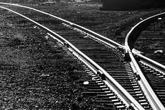 17-443bw (George Hamlin) Tags: virginia calverton norfolk southern railway ns railroad track turnout switch curves light dark shadow highlight monochrome black white photo decor george hamlin photography ballast