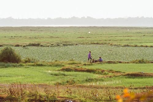 Couple at Marshlands, Mandalay Myanmar