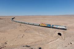 _MG_1155.jpg (Reed Skyllingstad) Tags: 1403 1423 antofagasta chile color copperore desert emd emdgr12u emdgr12um emdnf210 electromotivediesel fcab fcab1403 fcab1423 ferrocarrildeantofagastaabolivia gr12u gondola nf210 narrowgauge outdoors outside railroad railway sunny tracks train union