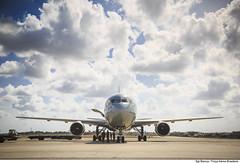 Boeing 767-300 ER durante a CRUZEX (Força Aérea Brasileira - Página Oficial) Tags: 2018 bra boeing767300er brasil brazil cruzex cruzex2018 fab fab2900 forcaaereabrasileira forçaaéreabrasileira fotobiancaviol natalrn aeronave aircrat airplane avião brazilianairforce turbofan turbojatoaeronave turbojet