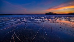 Floating reeds and ice (Kari Siren) Tags: reed old ice lake karijarvi jaala finland