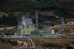 Biomassa Cornia-92