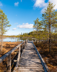 Spring. (laurilehtophotography) Tags: suomi finland leivonmäki kansallispuisto nationalpark spring morning blue sky nature landscape forest swamp marsh pond nikon d750 tamron 2470mm amazing europe photowalk clouds
