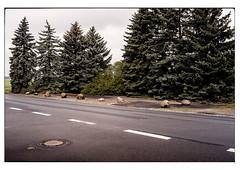 (schlomo jawotnik) Tags: 2019 april allenbüttel dorf landleben landeier landstrase bäume nadelbaum gullideckel asphalt usw