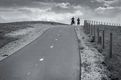 Bicycletour (Pieter Musterd) Tags: fiets fietser fietspad duinen pietermusterd musterd canon pmusterdziggonl nederland holland nl canon5dmarkii canon5d denhaag 'sgravenhage thehague lahaye zwartwit blackwhite zww bw nik photoshop