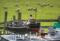 Sheep and model boats, Withybed Green, Alvechurch (alanhitchcock49) Tags: the crown inn withybed green alvechurch worcestershire worcester birmingham droitwich canal society 50th anniversary 13 april 2019 model boats sheep