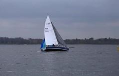 oops (antrimboatclub) Tags: spinnaker atlantic challenge antrimboatclub boat sail sailing ireland sixmilewater loughneagh antrimbay antrim