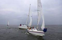 Checking the line (antrimboatclub) Tags: spinnaker atlantic challenge antrimboatclub boat sail sailing ireland sixmilewater loughneagh antrimbay antrim