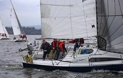 The Bull family (antrimboatclub) Tags: spinnaker atlantic challenge antrimboatclub boat sail sailing ireland sixmilewater loughneagh antrimbay antrim