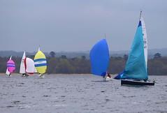 Some ziging and some zaging (antrimboatclub) Tags: spinnaker atlantic challenge antrimboatclub boat sail sailing ireland sixmilewater loughneagh antrimbay antrim