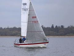 Fait Accompli finishes (antrimboatclub) Tags: spinnaker atlantic challenge antrimboatclub boat sail sailing ireland sixmilewater loughneagh antrimbay antrim