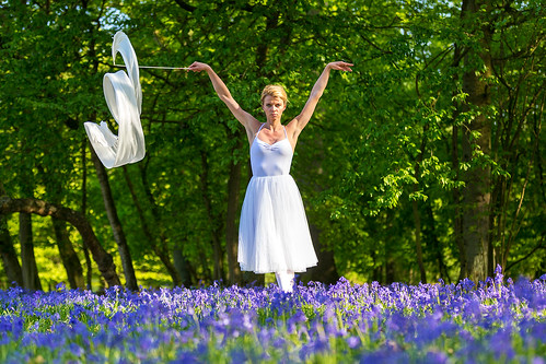 Dances with bluebells # 9