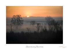 Sanctuary Sunrise (baldwinm16) Tags: audubon haehnlesanctuary mi may michigan conservation habitat nature outdoors outside preserve sanctuary season spring springtime natureofthingsphotography sunrise