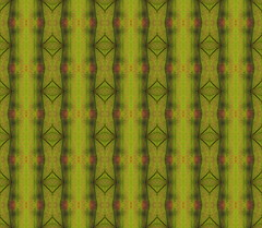 Nature pattern from repeated green and red leaf macro details (ciddibirikiuc) Tags: greentone hypnose kaleidoscope leaf nature pattern redtone repeat texture yellowtone macro m43turkiye