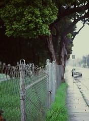 Sunnyvale, California (bior) Tags: pentax645nii pentax645 6x45cm ektachrome e200 kodakektachrome slidefilm mediumformat 120 sunnyvale street residential suburbs fence chainlinkfence rain sidewalk