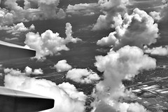 Pillars of Clouds (Black & White) (thor_mark ) Tags: airplanewindow airplanewindowview airplanewing americanairlines azimuth114 blackwhite blueskieswithclouds capturenx2edited clouds colorefexpro day1 flightaustodfw flyingaboveclouds flyingabovetheclouds flyingoutofaus flyingoutofaustin flyingovertexas jetairplane lookingeast lookingoutsideplanewindow lookingoutairplanewindow lookingouttheairplanewindow miscellaneous nikond800e outside partlycloudy planewindow planewing project365 sunny travel triptogatewaymammothcuyahoganationalparks bedford texas unitedstates