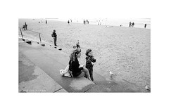 Manly beach, Sydney 2018  #015 (lynnb's snaps) Tags: manly tmaxdeveloper tmax3200 xa4 bw beach film 2018 woman child manlybeach australia sydney sand seagulls people street zuiko28mmf35macro blackandwhite bianconegro biancoenero blackwhite bianconero blancoynegro noiretblanc schwarzweis monochrome ishootfilm