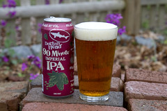Take a Minute (or 90) (brucetopher) Tags: craft beer brew craftbeer craftbrew smallbatch ale americancraftbeer dogfish head brewery 90minute imperialpaleale pale imperial garden spring bricks ipa