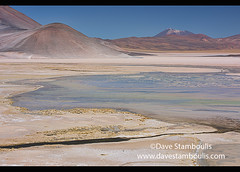 Surreal landscape at the Salar Aguas Calientes, Atacama Desert, Chile (jitenshaman) Tags: travel worldtravel destination destinations southamerica latinamerica chile atacama sanpedrodeatacama nortegrande desert altiplano plains mountain mountains volcano landscape landscapes scenery nature outdoors natural view vista colours colors colour color arid dry deserts valley naturallandscape naturesbeauty beautiful desolate stark desertscape wilderness volcanic colourful salar saltflats saltflat salt moonscape salaraguascalientes rainbow surreal