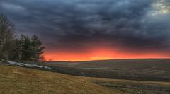 Clouds (Roman_P2013) Tags: fields clouds norway stange best shot sunset view landscape field dawn countryside horizonoverland scenery moodysky rural dramaticsky sunrise sun singletree