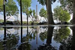 Tour Eiffel - Paris (hervétherry) Tags: france iledefrance paris 75016 canon eos 7d efs 1022 tour eiffel avenue new york avenuedenewyork reflet reflection reflexion arbre
