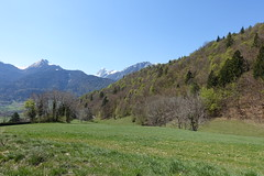 Hike around Pointe de Chenevier (*_*) Tags: hiking mountain montagne nature randonnee walk marche europe france hautesavoie 74 annecy sourcesdulacdannecy savoie spring printemps 2019 april bornes pointedechenevier faverges favergesseythenex