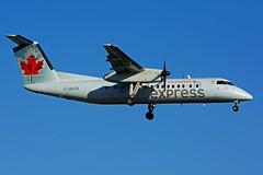 C-GHTA (Air Canada express - JAZZ) (Steelhead 2010) Tags: aircanada aircanadaexpress jazz dhc8 dhc8300 dehavillandcanada yyz creg cghta