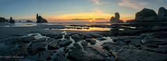 West Coast Sunset, South Island (OJeffrey Photography) Tags: westcoast southisland newzealand panorama pano yellow golden sunset pink tidepool lowtide ojeffrey ojeffreyphotography jeffowens nikon d850