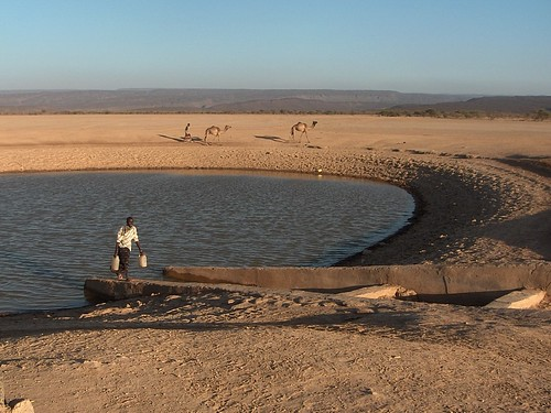 Depression and water harvesting, Dorra Hotoy, Djibouti (2)