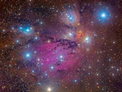 Angel Nebula NGC 2170 (Juan Lozano de Haro) Tags: astrophotography nebula nebulosa space deep sky cielo estrella stars star color colours espacio astrofotografía astronomía astro astronomy galaxy galaxia