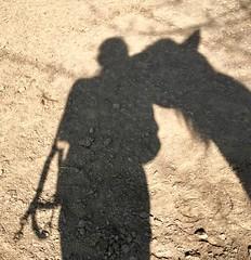 Glücksmoment (michaelab311) Tags: glücksmoment amomentofhappiness uninstantdebonheur glück liebe schatten guapo kuss schattenspiel shadows love vertrauen trust roundpen pferd horse cheval cruzado pre lusitano beziehung relationship