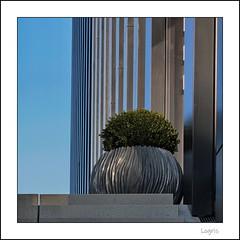 The big floor vase (Logris) Tags: vase stairs treppe treppen architecture architektur mediaharbor detail